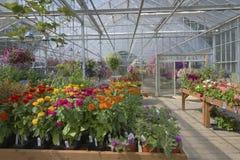 Bauernhof- und Gartenkindertagesstätte in Canby Oregon Lizenzfreie Stockbilder