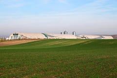 Bauernhof und grünes Weizenfeld Lizenzfreies Stockbild