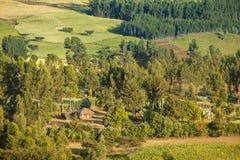 Bauernhof und Haus in Äthiopien Stockbild