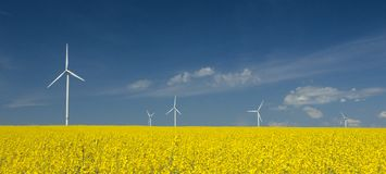 Bauernhof von windturbines nah an Rapsfeld Stockbilder