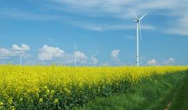 Bauernhof von windturbines nah an Rapsfeld Lizenzfreie Stockfotos