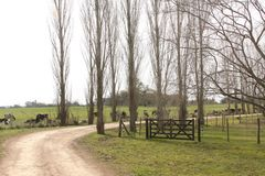 Bauernhofbäume und -zaun lizenzfreie stockbilder