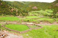Bauernhoffeld im Berg Stockbilder