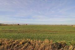 Bauernhoffeld im Winter Stockbilder