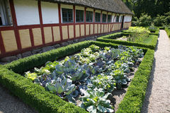 Bauernhofhaus mit Kohlgarten Stockbild