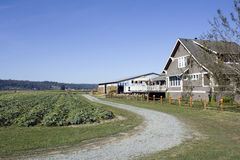 Bauernhofhauspfad stockfoto