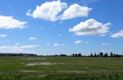 Bauernhofland im Vorfrühling Stockfotos