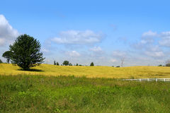Bauernhoflandschaft Stockfotos