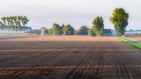Bauernhoflandschaft im nebeligen Morgenlicht Stockbilder
