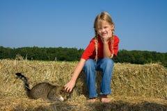 Bauernhofmädchen und ihre Katze. Stockfoto