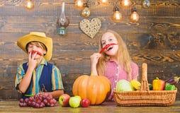 Bauernhofmarkt Geschwister, die Spa? haben Kinderlandwirtm?dchen-Jungengem?se erntet Familienbauernhof Kinder, die Bauernhof dars lizenzfreies stockbild