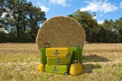 Bauernhofreise Lizenzfreie Stockbilder