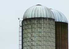 Bauernhofsilo Stockbilder