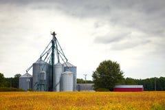 Bauernhofsilospeichertürme in den gelben Ernten stockbilder