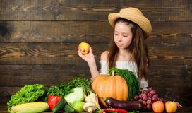 Bauernhoft?tigkeiten f?r Kinder M?dchenkinderbauernhofmarkt mit Fallernte Kinderlandwirt mit h?lzernem Hintergrund der Ernte Fami stockfoto