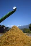 Bauernhofwerkzeuge Stockfotos