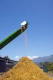 Bauernhofwerkzeuge Stockfotografie