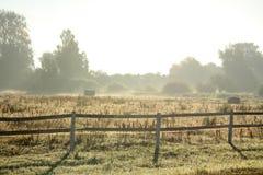 Bauernhofzaun am Sommermorgen Stockbild