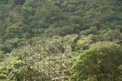 Baugerüst über den Dschungeln von Sri Lanka Stockbild