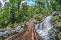 Bauholz auf dem Wasserfall Lizenzfreies Stockbild