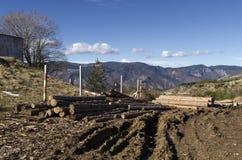 Bauholz auf einem Hügel in einem Rhodope-Berg Stockbilder