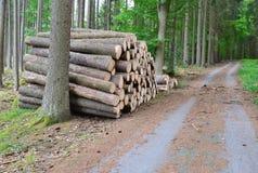 Bauholz bereit zum Transport, Süd-Böhmen Lizenzfreie Stockbilder