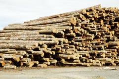 Bauholz, das 3 aufbereitet Stockfotos