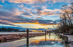 Bauholz, das auf Fraser River schwimmt Lizenzfreie Stockbilder