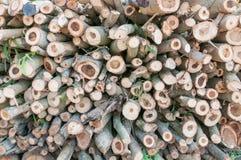 Bauholz für Brennholz Stockfotografie