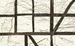 Bauholz-gestaltete Wand Stockfotografie
