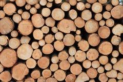 Bauholz im Wald Stockfotos
