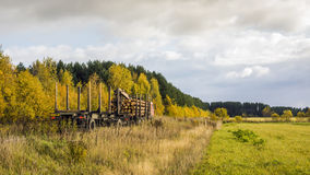 Bauholz-LKW mit meldet den Waldweg an Stockbilder