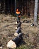 Bauholz meldet Zeile, Holzfäller an Stockfoto