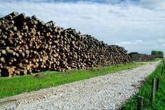 Bauholzablage Stockbild