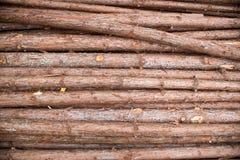 Bauholzbeschaffenheit Lizenzfreies Stockfoto