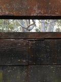 Bauholzbeschaffenheit Stockfotos