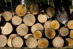 Bauholzholz auf einem Stapel lizenzfreie stockfotos