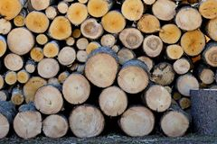 Bauholzholz auf einem Stapel stockbild