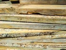Bauholzholzfußboden Stockbild
