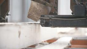 Bauholzindustrie - Förderer von meldet Front von Schneidemaschinen an stock video