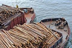 Bauholztransport durch Behälter Stockfoto