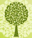 Baum. Lizenzfreies Stockfoto
