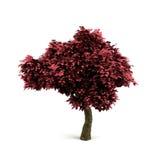 Baum 3d. vektor abbildung