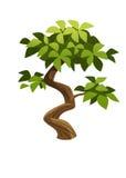 Baum Stockfotografie