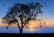 Baum. stock abbildung