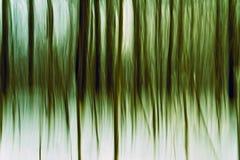 Baum-Abstraktion Lizenzfreies Stockfoto