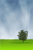 Baum alleine lizenzfreie abbildung