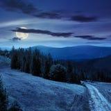Baum auf Abhangweg durch meadowon Abhang nachts Lizenzfreie Stockfotografie