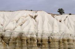 Baum auf Baglidere-Schlucht, weiße geologische Felsformationen Stockfotografie
