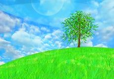 Baum auf dem Hügel Stockbilder
